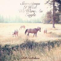 14 - bill-callahan-cover